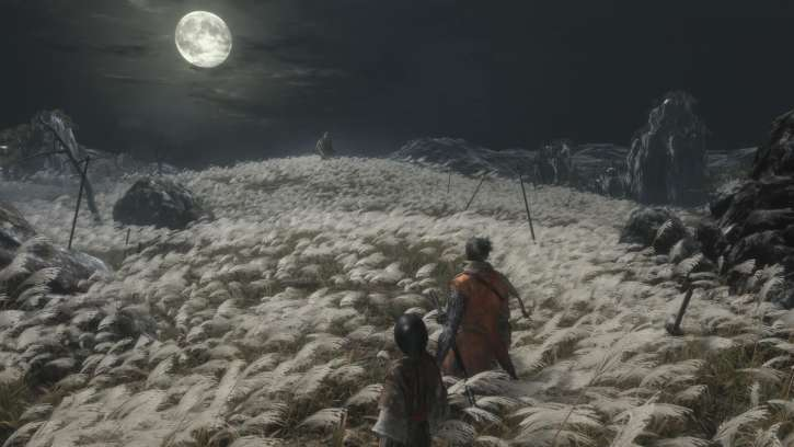 Sekiro: Shadows Die Twice Is Receiving Free Content That Will Extend Game Play