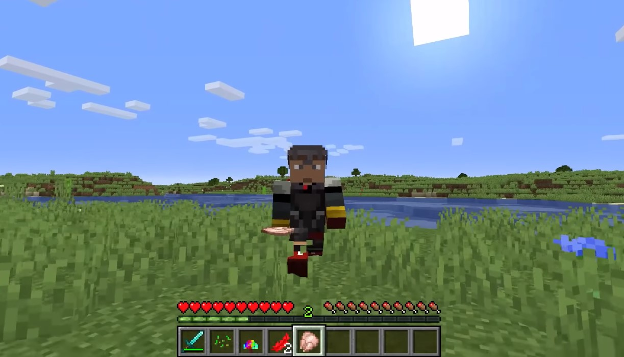Minecraft How To See Status Effects