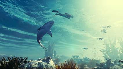 Upcoming Shark-Simulator Game Maneater Open For Pre-Purchase Discount On Epic Game Store