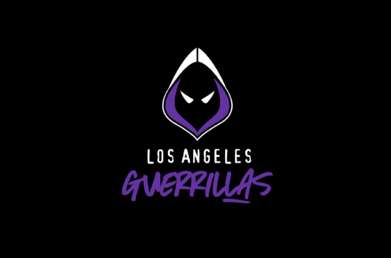 Los Angeles Guerrillas Team Breakdown Call Of Duty League Esports Inaugural Series Happy Gamer