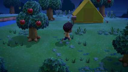 Today's Nintendo Direct Featured Animal Crossing: New Horizons, Showing Off A Handful Of New Features