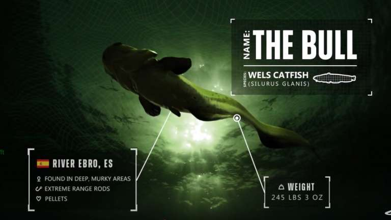 The Fishing Simulator The Catch: Carp And Coarse Comes Out This Summer