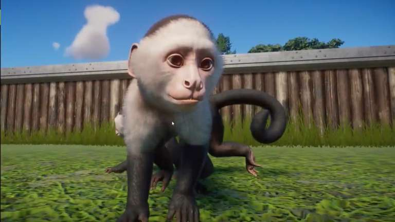The Zoo Simulator Planet Zoo Just Received Its South America DLC Expansion