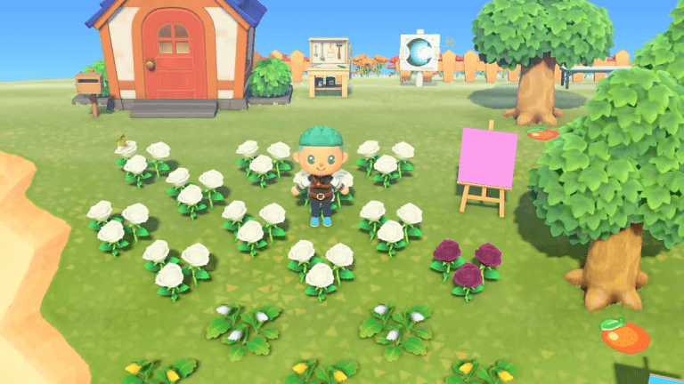 Animal Crossing: New Horizons Datamining Reveals A Surprising Need For Background Knowledge In Mendelian Genetics