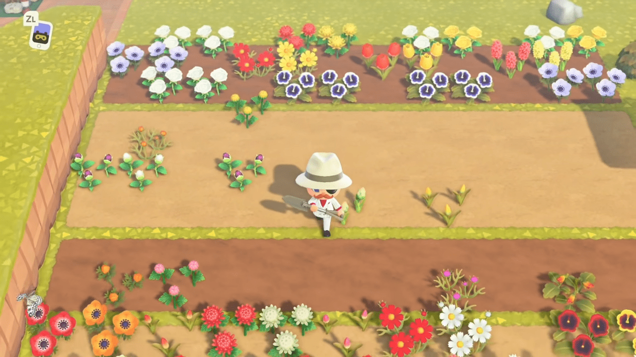 Animal Crossing New Horizons Community Has Created A Guide To