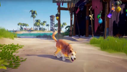 Sea Of Thieves Is Adding Pet Dogs In Vaults Of The Ancients DLC Update