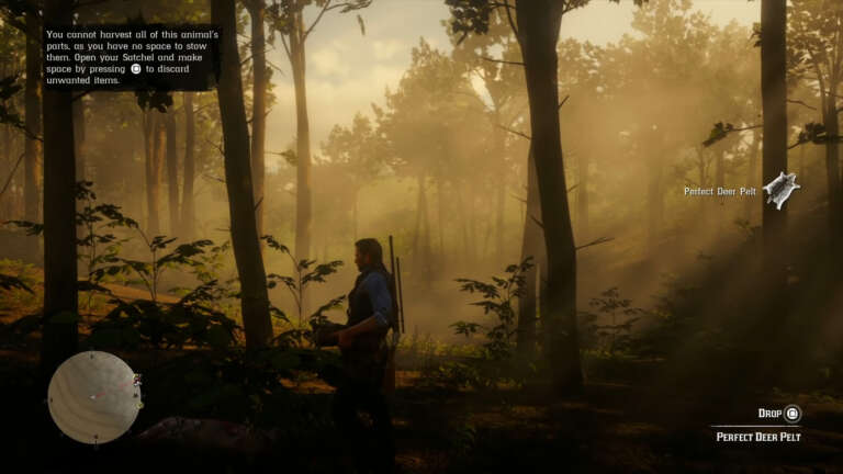 Obtaining Perfect Pelts In Red Dead Redemption 2: A Guide To Harvesting Fine Furs